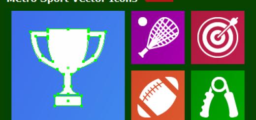 Metro Sport Icons