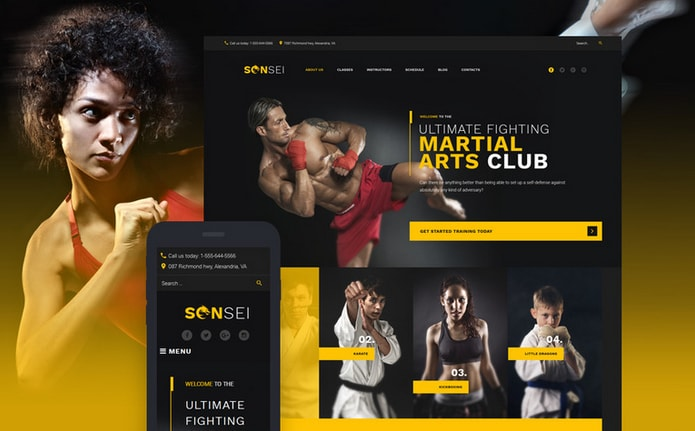 Sensei - Martial Arts WordPress Theme