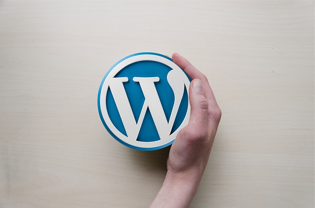 WordPress Blogging Plateform